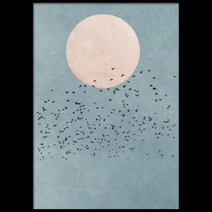 Birds Fly Away Poster